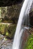 Cascata alla nova di Levada che fa un'escursione percorso, isola del Madera Immagine Stock