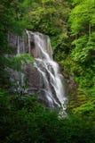 Cascata alta circondata dalla foresta verde di estate Immagini Stock Libere da Diritti