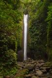 Cascata alta nella foresta della giungla, cadente nel fiume della montagna con il letto di pietra Immagini Stock