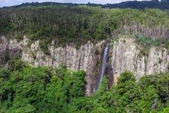 Cascata alta scenica nel Queensland Immagini Stock