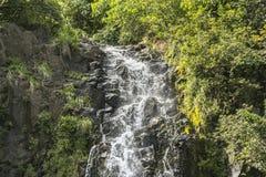 Cascata alta sulla strada a Hana, Maui, Hawai Immagini Stock Libere da Diritti