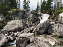 Cascata alto Tatras - in SLOVACCHIA fotografia stock