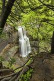 Cascata attraverso gli alberi Immagine Stock Libera da Diritti
