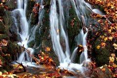 Cascata in autunno Fotografie Stock