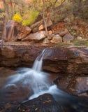 Cascata in autunno nel parco di Zion National Immagine Stock