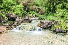 Cascata in Ayn Khor e nel paesaggio verde fertile, alberi e montagne nebbiose alla stazione turistica, Salalah, Oman fotografia stock