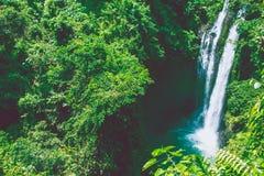 Cascata in Bali Immagini Stock
