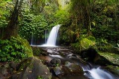 Cascata Bali di Yeh Hoo Fotografia Stock Libera da Diritti