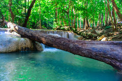 Cascata bello Kanchanaburi, Tailandia di Erawan Immagini Stock