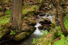 Cascata bonita em montanhas de Sudety Fotos de Stock Royalty Free