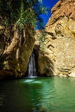 Cascata Chebika Tunisia Fotografia Stock