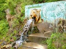 Cascata con acqua della montagna Fotografia Stock Libera da Diritti