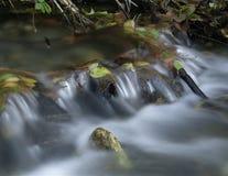 Cascata con i fogli di autunno Fotografia Stock Libera da Diritti