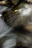 Cascata con il foglio della tremula Immagine Stock