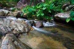 Cascata con la pietra di muschio verde in foresta pluviale, Kiriwong Vil immagini stock