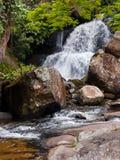 Cascata con le rocce ed i fogli Fotografia Stock Libera da Diritti