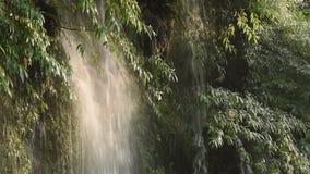 Cascata con luce solare morbida a Chengdu stock footage
