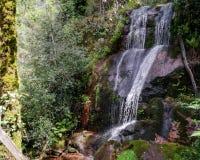 Cascata da laja在Geres -北葡萄牙 免版税库存照片