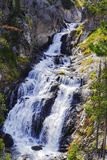 Cascata dal fiume Yellowstone nel parco nazionale di Yellowstone immagine stock