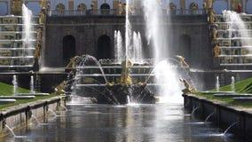 Cascata das fontes no parque mais baixo vídeos de arquivo