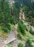Cascata dei cavalli la cascata più alta in Romania Fotografie Stock Libere da Diritti