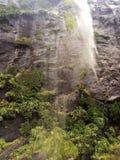 Cascata del ¼ ŒNew la Zelanda di Milford Soundï Immagine Stock Libera da Diritti