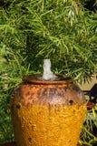 Cascata del barattolo sull'albero del fondo Fotografie Stock Libere da Diritti