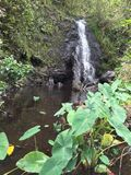 Cascata del cratere di Ka'au terza immagine stock libera da diritti