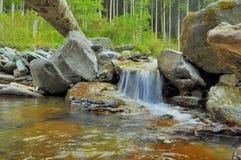 Cascata del fiume della montagna Fotografia Stock Libera da Diritti