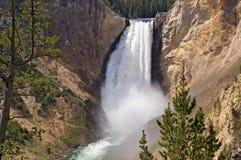 Cascata del fiume di Yellowstone fotografia stock libera da diritti