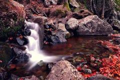 Cascata del fiume nella caduta Fotografie Stock