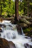Cascata del flusso della montagna Immagini Stock