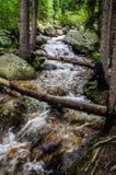 Cascata del flusso della montagna Fotografia Stock Libera da Diritti