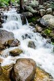 Cascata del flusso della montagna Fotografia Stock