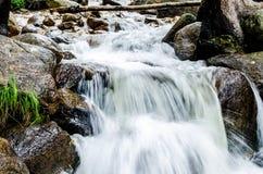 Cascata del flusso della montagna Immagine Stock