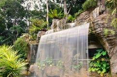 Cascata del giardino botanico Immagine Stock Libera da Diritti