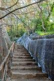 Cascata del parco in autunno Fotografia Stock