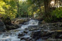 Cascata del parco di Gatineau Fotografie Stock Libere da Diritti