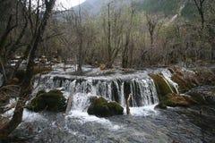 Cascata del parco nazionale di Jiuzhaigou in foresta fotografia stock libera da diritti