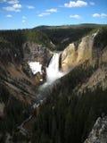 Cascata del parco nazionale di Yellowstone Fotografie Stock Libere da Diritti
