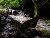 Cascata del rong di Nang Immagini Stock