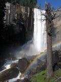 Cascata del Yosemite Fotografie Stock
