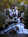 Cascata dell'insenatura del fiume della montagna nella caduta Fotografie Stock Libere da Diritti