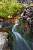 Cascata dell'insenatura della foresta nazionale Fotografia Stock Libera da Diritti