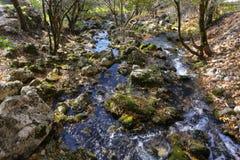 Cascata dell'insenatura della montagna con muschio verde sugli alberi caduti Fotografia Stock