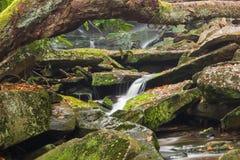 Cascata della cascata di Blackwater Fotografia Stock