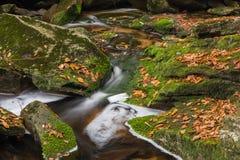 Cascata della cascata di Blackwater Immagini Stock