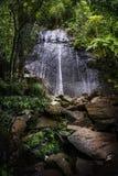 Cascata della coca della La di EL Yunque Fotografia Stock Libera da Diritti