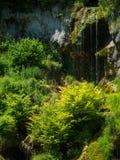 Cascata della corrente Cascata della montagna di Bigar, Romania Immagini Stock Libere da Diritti