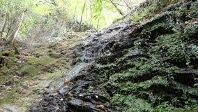 Cascata della corrente di Dorte alla valle di Dortebachtal al fiume di Mosella germany La parte del Mosella rive il percorso in R stock footage